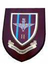 2nd BN Parachute Regiment Army Military Wall Plaque Para